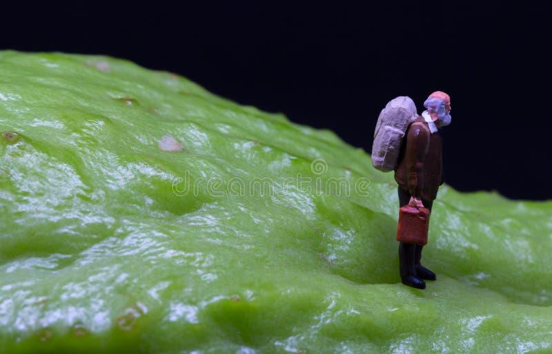 Figura dell'uomo anziano che cammina sulla pelle della frutta Figurina senior del viaggiatore sulla verdura esotica ruvida immagini stock libere da diritti