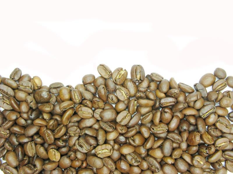 Figura di onda dei chicchi di caffè immagini stock libere da diritti