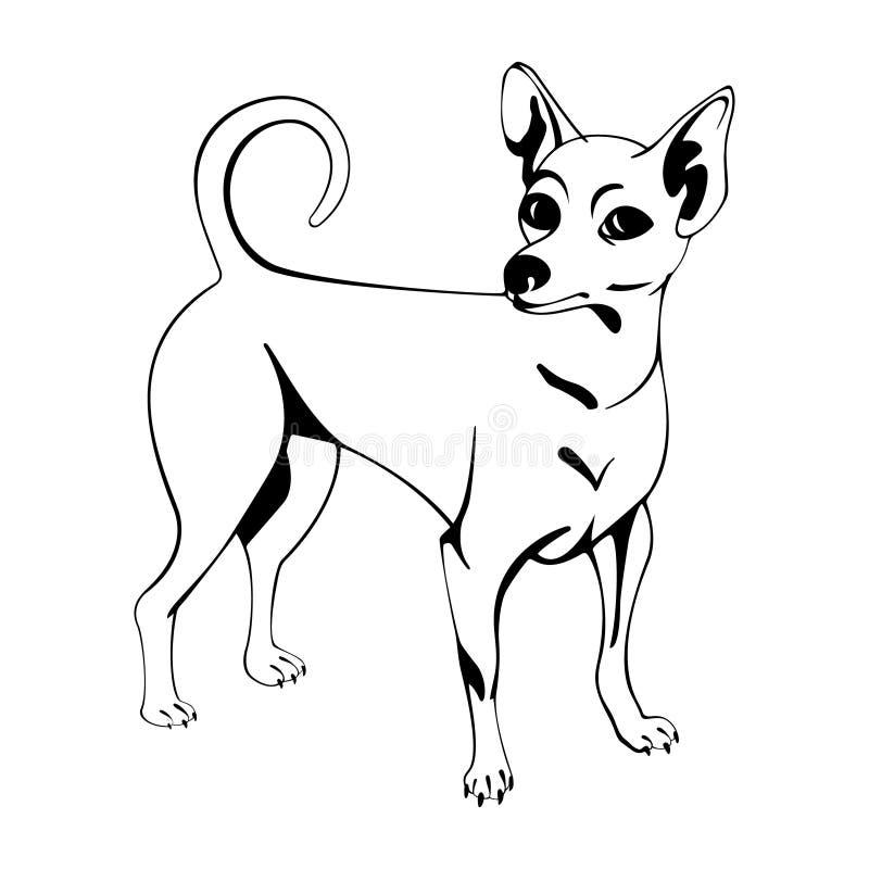 Figura disegno a tratteggio della chihuahua illustrazione di stock