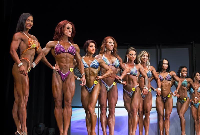 Figura formação dos concorrentes em Toronto 2018 pro Supershow imagens de stock royalty free