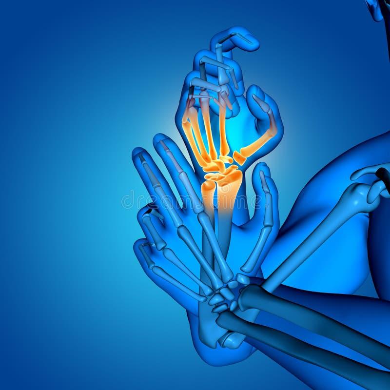 figura médica masculina 3D con cierre para arriba de los huesos de mano ilustración del vector