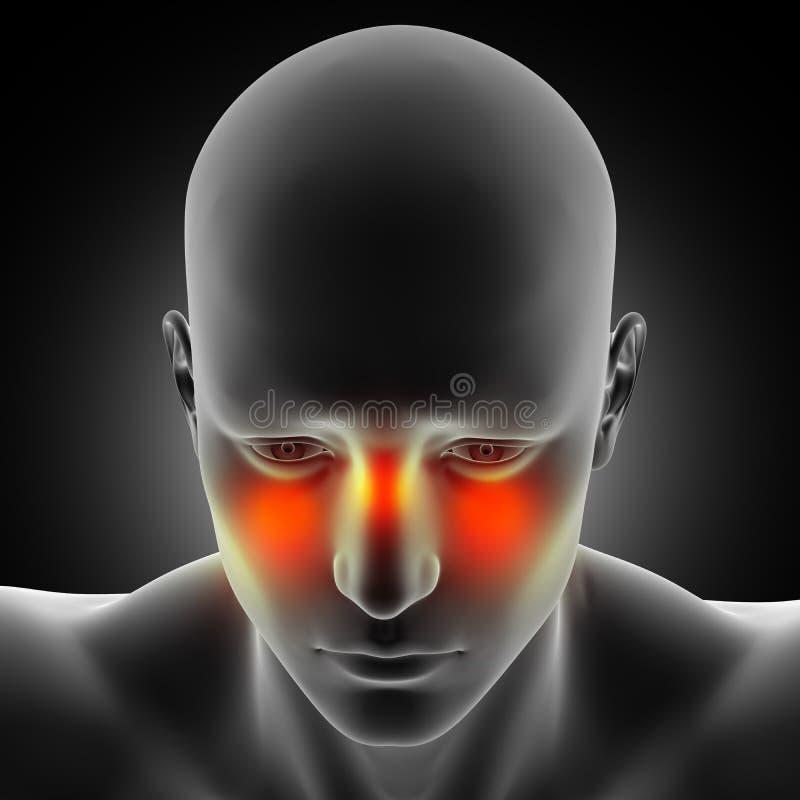 figura médica masculina 3D con el dolor del sino destacado stock de ilustración