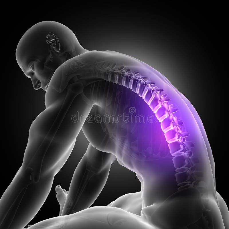 figura masculina 3D que se inclina encima con la espina dorsal destacada ilustración del vector