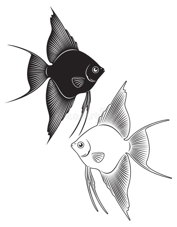 Download Angelfish ilustração do vetor. Ilustração de angelfish - 29844350