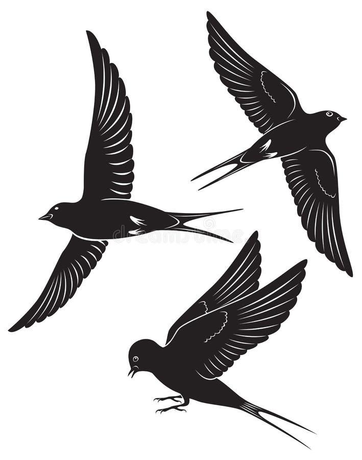 Download Andorinha do pássaro ilustração do vetor. Ilustração de estónia - 29844316