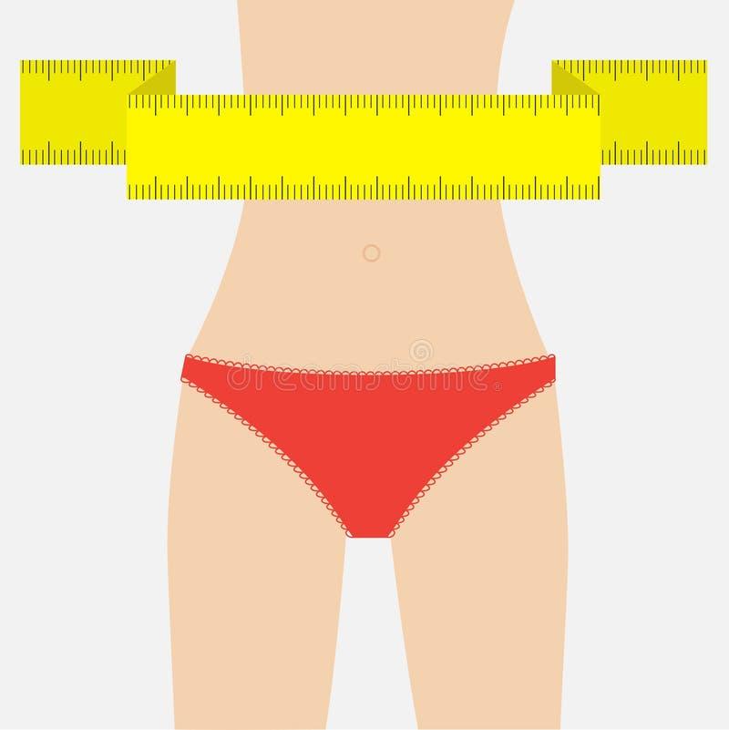 Figura ropa interior de la mujer del rojo de la cintura Cinta de medición ilustración del vector