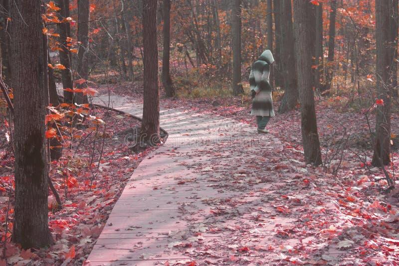 Figura spaventosa in manto nella foresta, immagine desaturata fotografie stock
