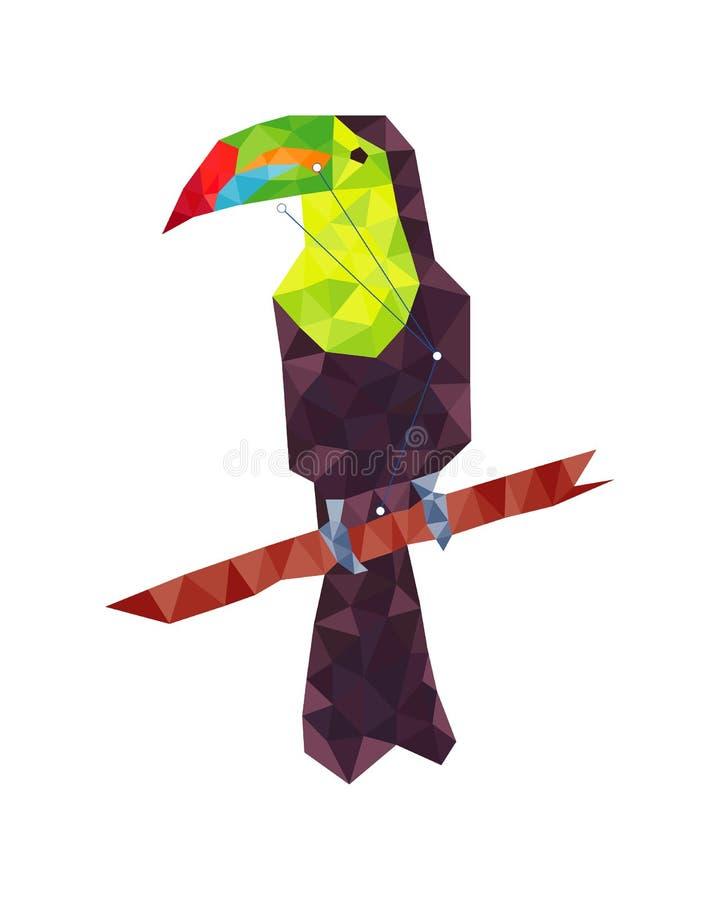Figura variopinta arte del tucano lowpoly nello stile su fondo bianco royalty illustrazione gratis