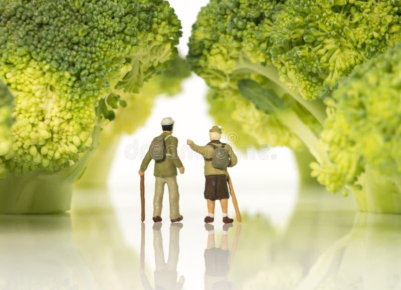 Figuras diminutas que andam em árvores dos brócolis fotografia de stock