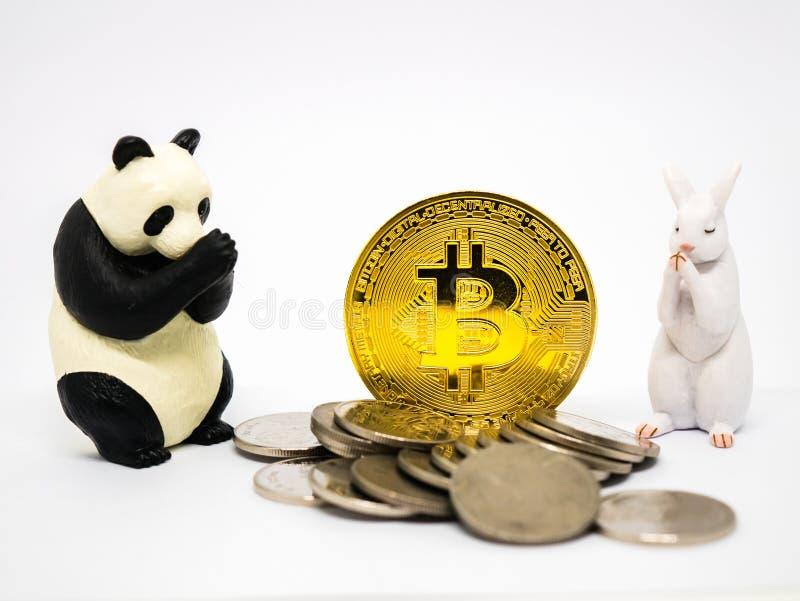 Figuras do coelho e da panda que rezam para o bitcoin imagem de stock