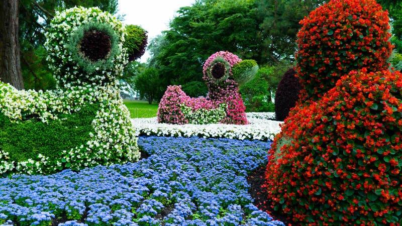 Figuras dos patos feitos das flores foto de stock