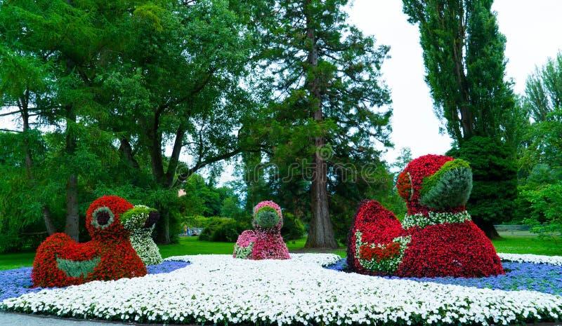 Figuras florais dos patos na ilha de Mainau em Alemanha imagens de stock royalty free