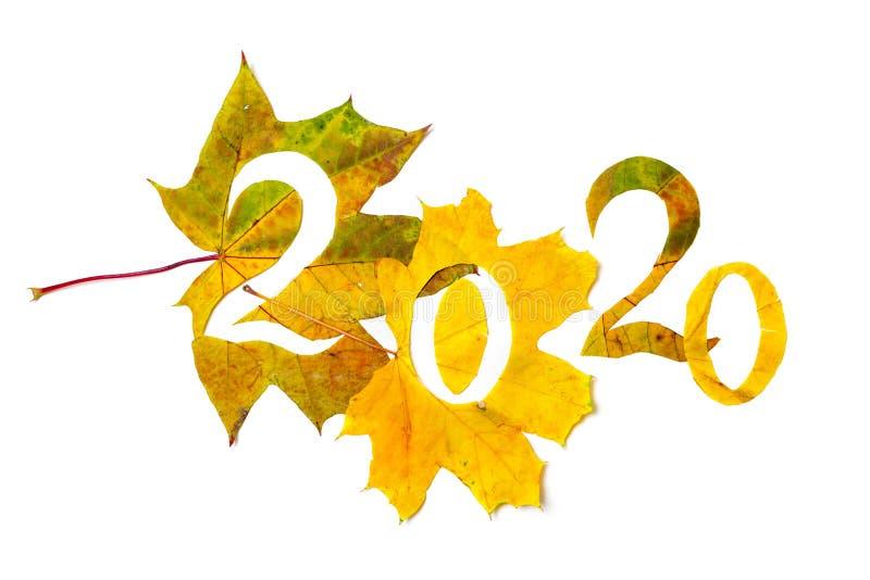 2020 figuras talladas de las hojas de arce amarillas foto de archivo