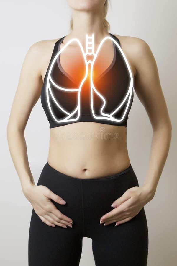 Figure avec la visualisation graphique des poumons photo stock