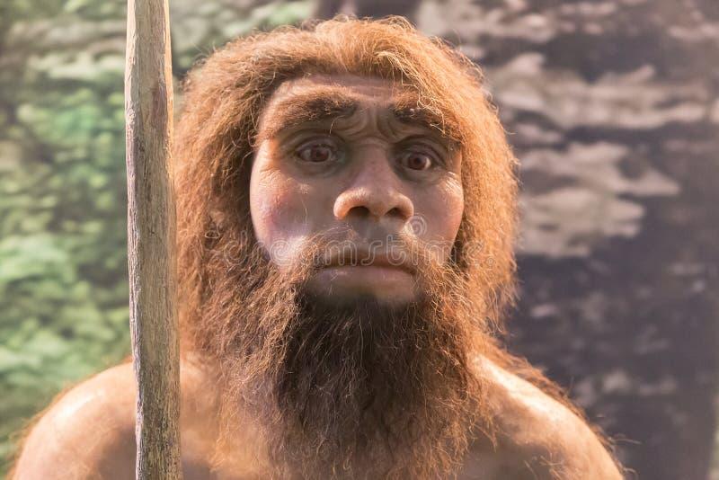 Figure de Néanderthal, récréation d'un humain photo libre de droits