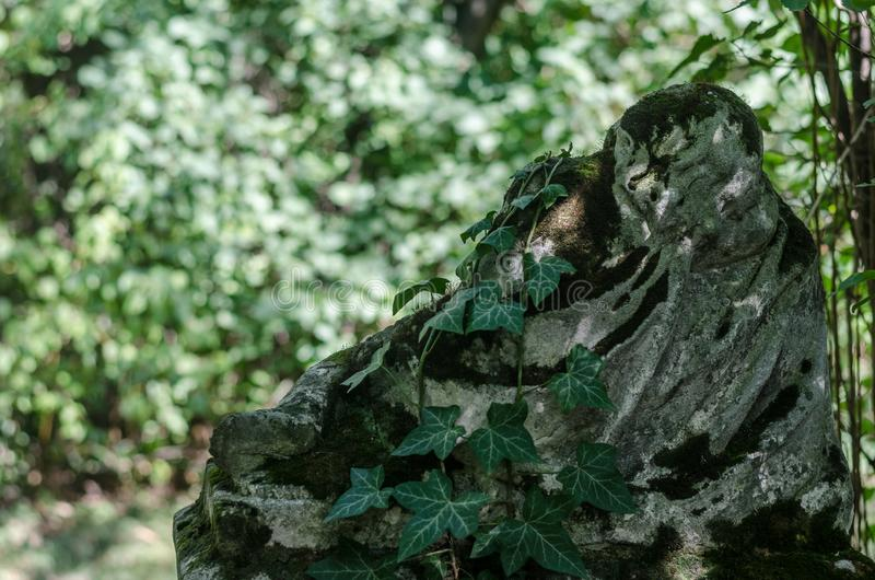 Figure at a grave with ivy. In a cemetery cross religion background jesus christianity faith symbol crucifix god catholic holy easter religious spirituality stock image