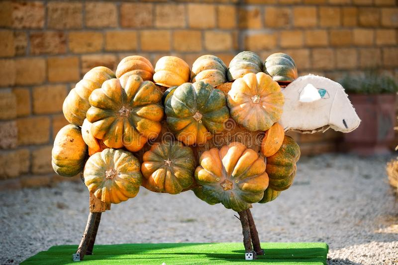 Figure of lamb made from pumpkins. Decoration for Thanksgiving Day. royalty free stock image