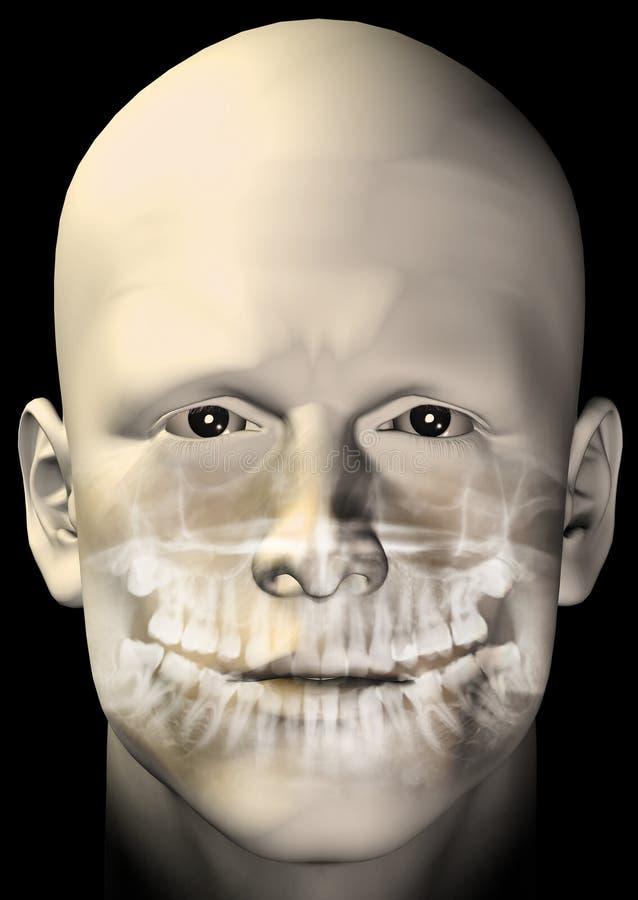 Figure mâle balayage dentaire illustration libre de droits