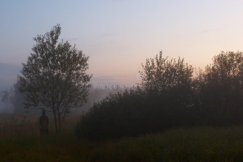 Figure na névoa imagem de stock