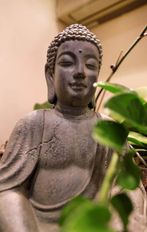 Figure and statue of Buddha in interior of apartment with green plants and indoors tree in room. Meditation zen sculpture. Figure and statue of Buddha in stock photography