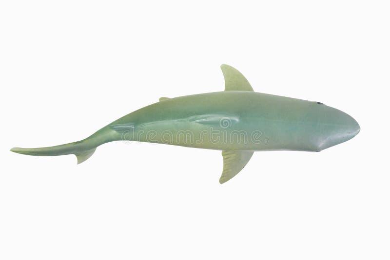Figure toy white shark isolated closeup image stock image