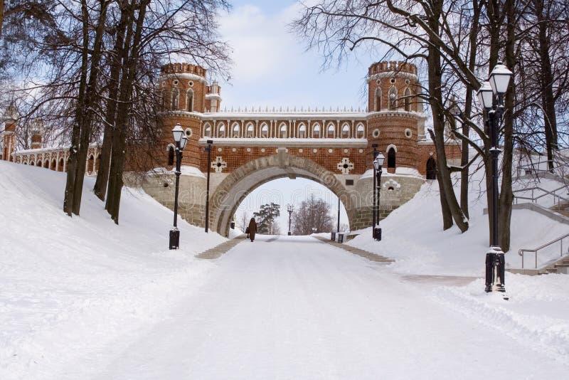 The figured bridge in museum-reserve stock images