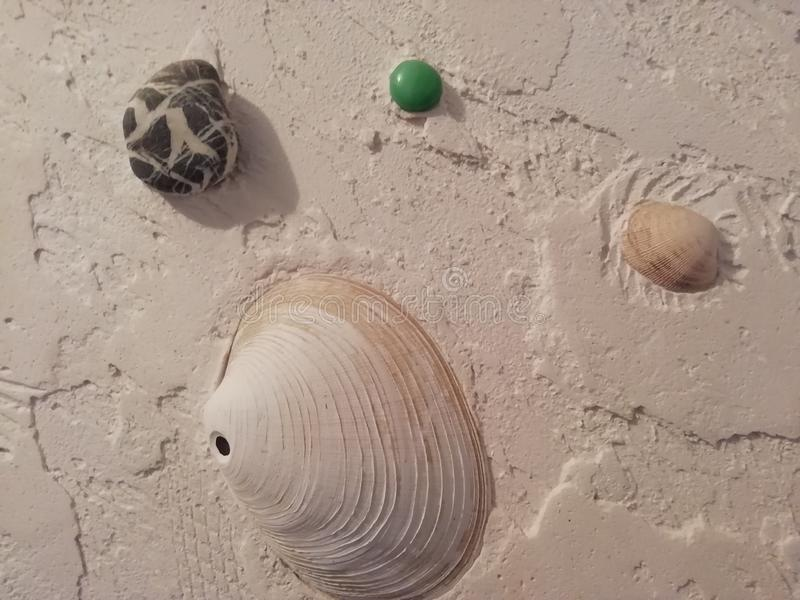 Figured plaster using shells and pebbles for the bathroom royalty free stock photo
