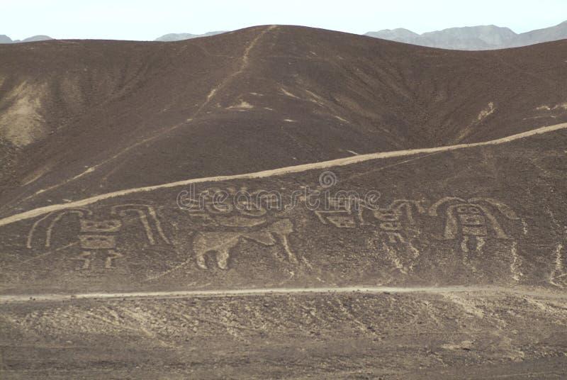 Figures of Palpa. Nazca (Peru royalty free stock photography