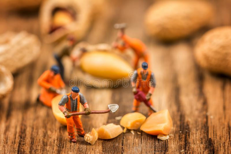 Figures working on peanuts stock photos