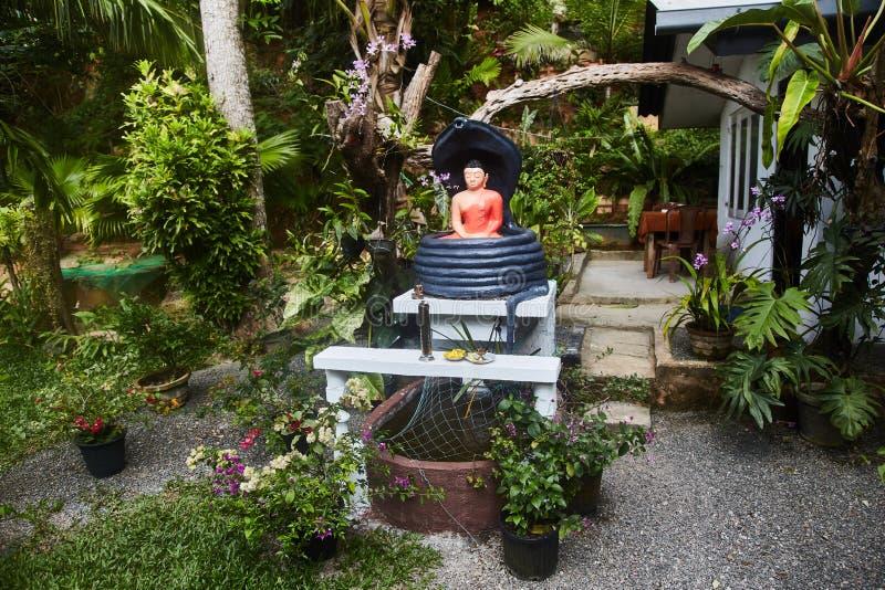 Figurilla de Buda en jardín tropical Sri Lanka fotos de archivo libres de regalías