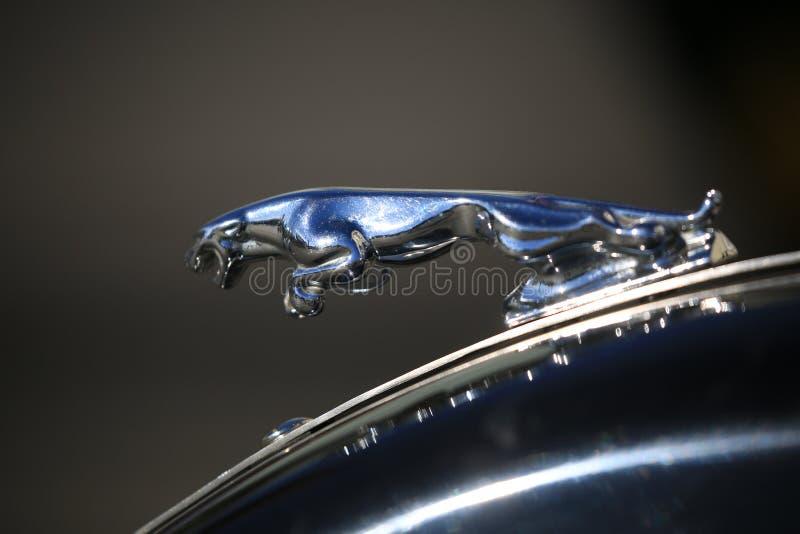 Figurina di Jaguar sul cuscino ammortizzatore anteriore della motocicletta su un fondo scuro, primo piano fotografia stock