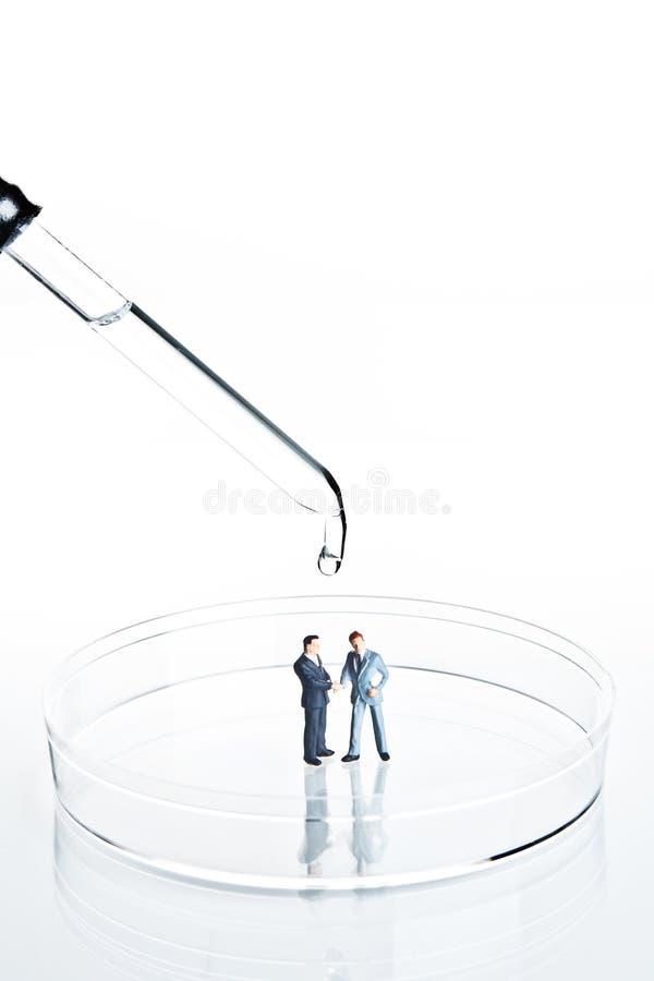 Figurines do negócio em um prato de petri foto de stock royalty free