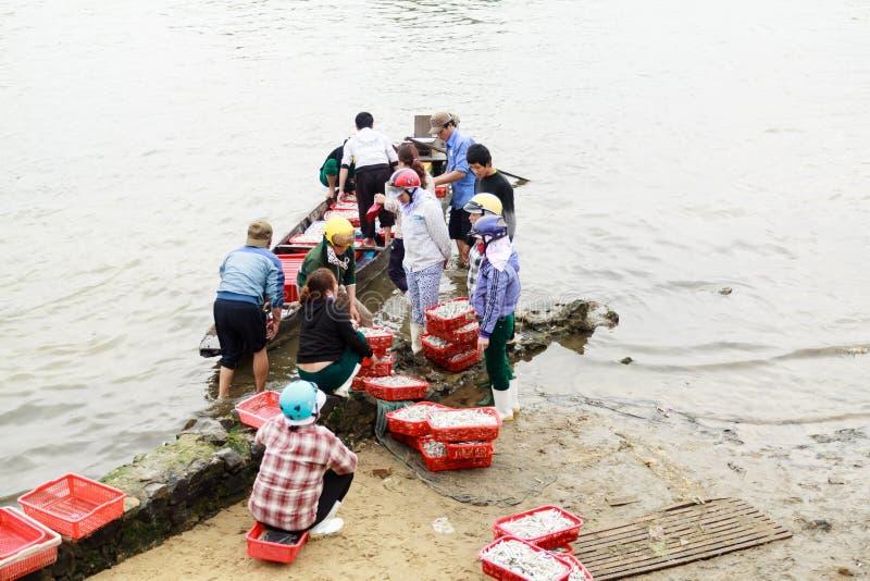 Fiishmarkt op het strand in Quang Binh-provincie, Vietnam royalty-vrije stock afbeeldingen