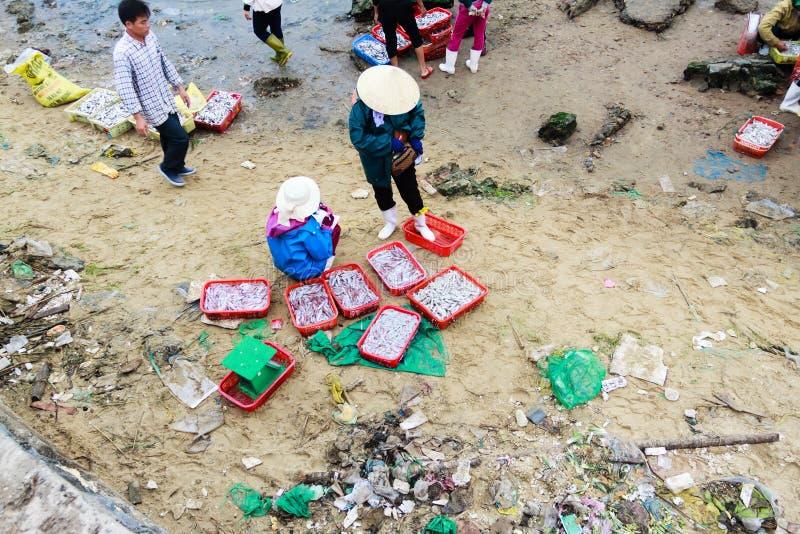 Fiishmarkt op het strand in Quang Binh-provincie, Vietnam stock foto