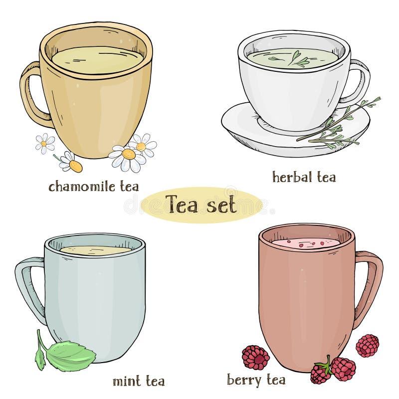 Fijado con las tazas de té Té de la manzanilla, de la menta, herbario y de la baya Ejemplo colorido del vector en estilo del bosq ilustración del vector