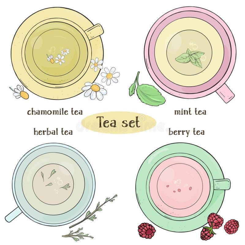 Fijado con las tazas de té Té de la manzanilla, de la menta, herbario y de la baya Ejemplo colorido del vector en estilo del bosq stock de ilustración