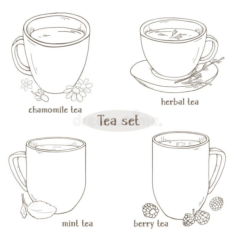 Fijado con las tazas de té Té de la manzanilla, de la menta, herbario y de la baya Para el menú del restaurante, procesando, aten ilustración del vector