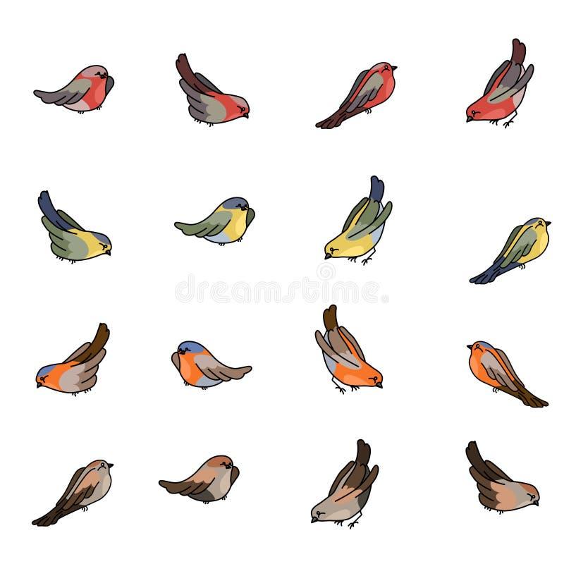 Fije con diversos pequeños pájaros - piñonero, tit, petirrojo y gorrión ilustración del vector