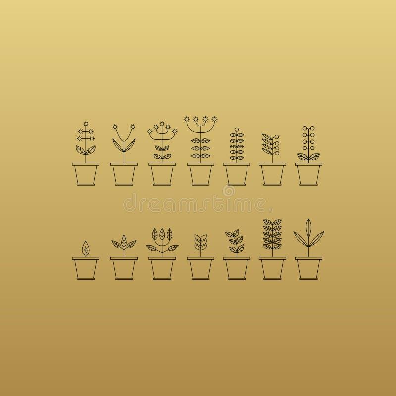 Fije con los iconos de la maceta Colecci?n de la naturaleza Flora Elements Muestras de Eco Ilustraci?n del vector ilustración del vector