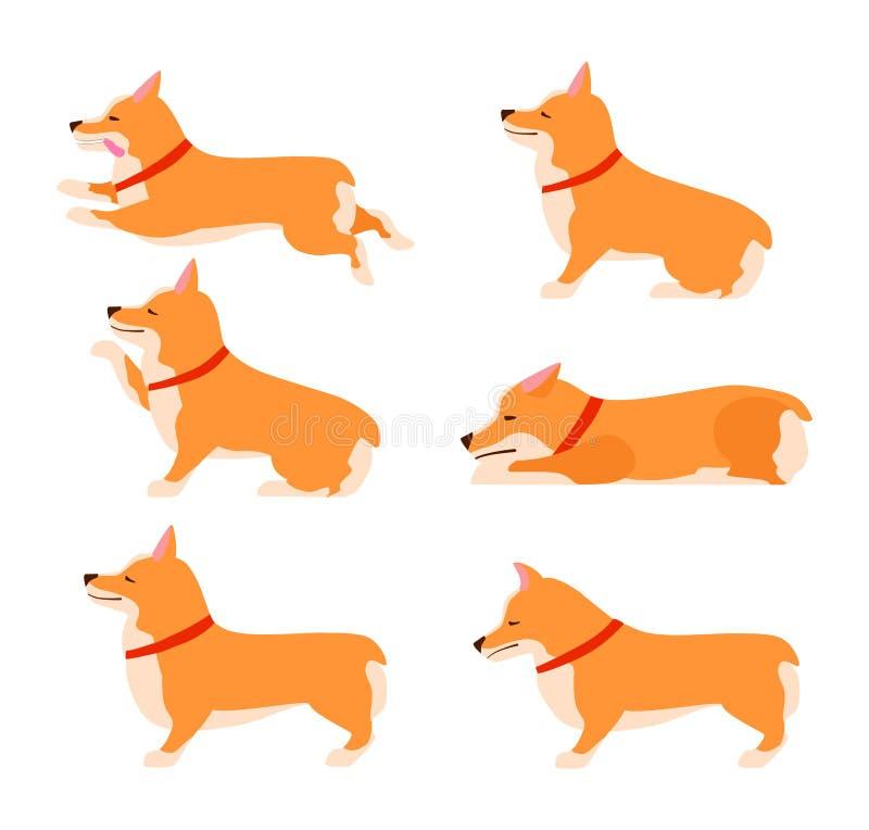 Fije de actitudes y de perro de las emociones Sistema del Corgi Galés Enseñe al perro Permanezca, espere, siéntese stock de ilustración