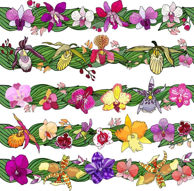 Fije de cepillos florales Elementos dibujados mano para el diseño Flores de las orquídeas libre illustration