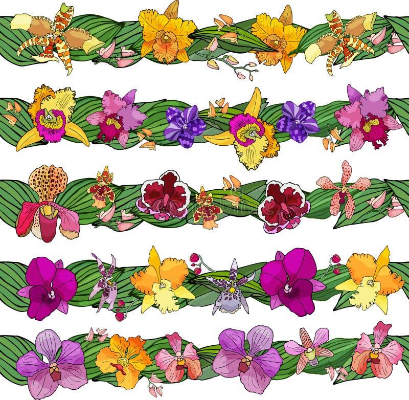 Fije de cepillos florales Elementos dibujados mano para el diseño Flores de las orquídeas stock de ilustración
