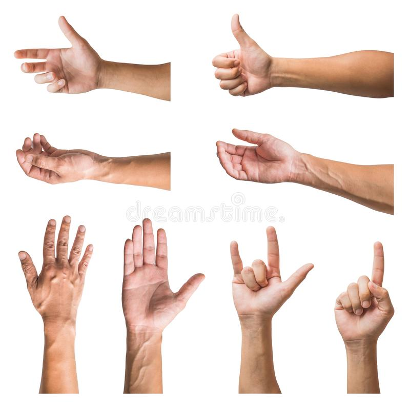 Fije de diversos gestos y de la muestra de la mano del hombre aislados en el fondo blanco foto de archivo libre de regalías