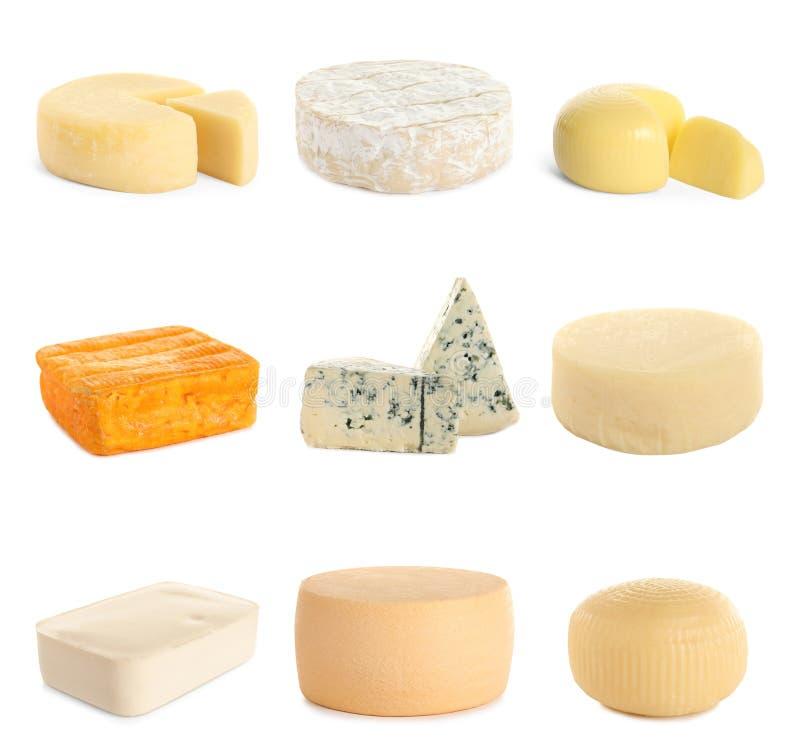 Fije de diversos quesos deliciosos en blanco fotos de archivo