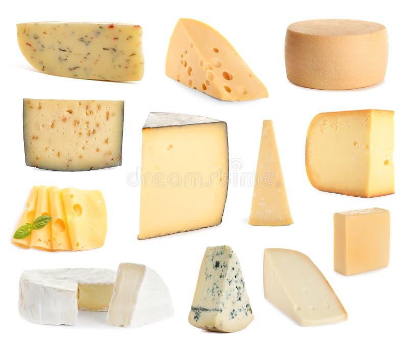 Fije de diversos quesos deliciosos en blanco foto de archivo libre de regalías