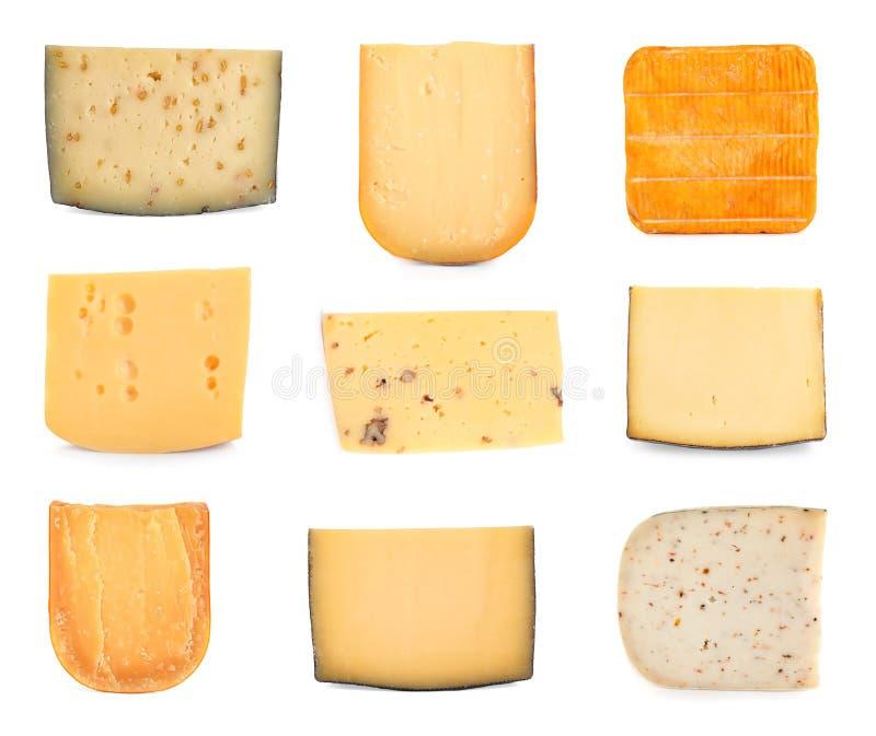 Fije de diversos quesos deliciosos en blanco fotografía de archivo libre de regalías