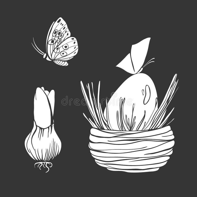 Fije de ejemplos del vector del bulbo, de la mariposa y del huevo del hyacinthus en la colección de la primavera de la jerarquía  ilustración del vector