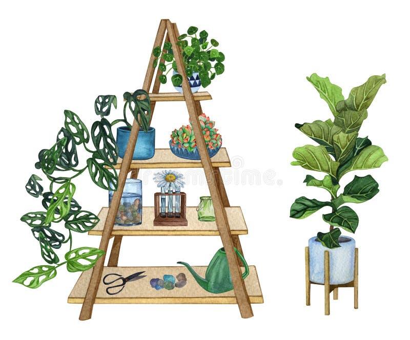Fije de estante con las plantas y los objetos decorativos Ejemplo de la acuarela de la planta interior libre illustration