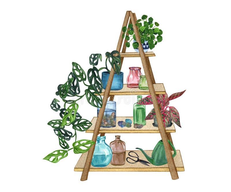 Fije de estante con las plantas y los objetos decorativos Ejemplo de la acuarela de la planta interior stock de ilustración