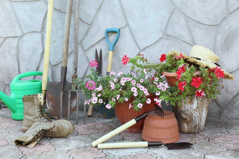 Fije de herramientas que cultivan un huerto al aire libre imagenes de archivo